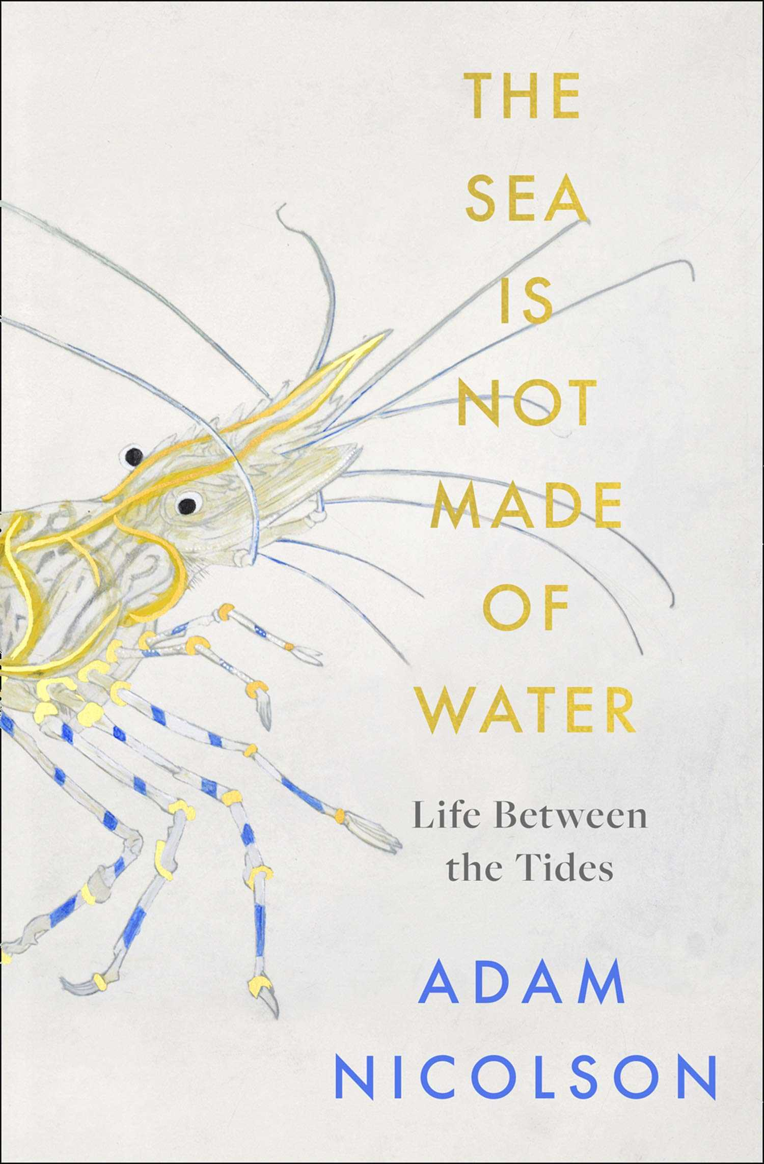 The Sea Is Not Made of Water